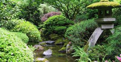 consigli utili per un perfetto giardino giapponese